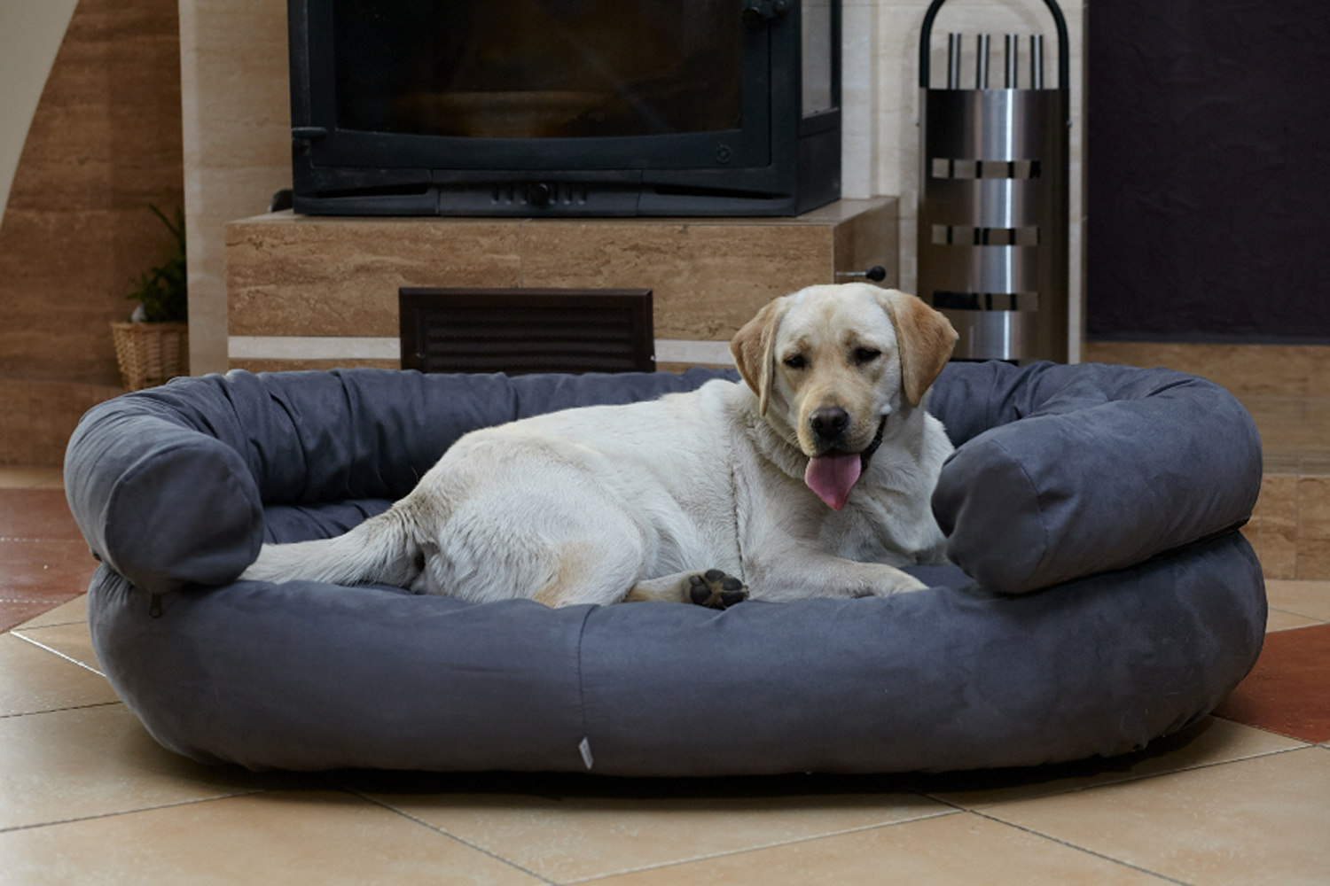Dog Beds With A Massaging System