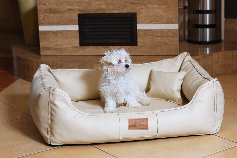 maddox ortho visco hundebett von tierlando kunstleder hundesofa s m l xl xxl ebay. Black Bedroom Furniture Sets. Home Design Ideas